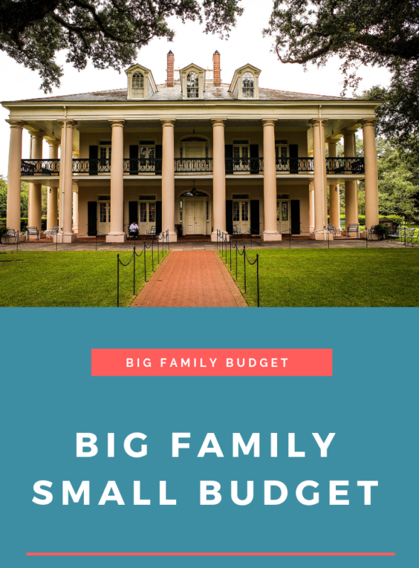 Big Family Small Budget