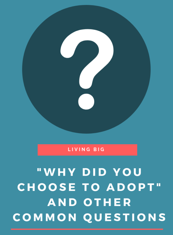 """Why Did You Choose to Adopt"" and Other Common Questions"