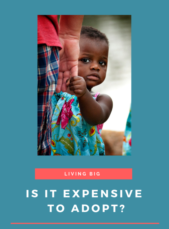 Is It Expensive To Adopt?
