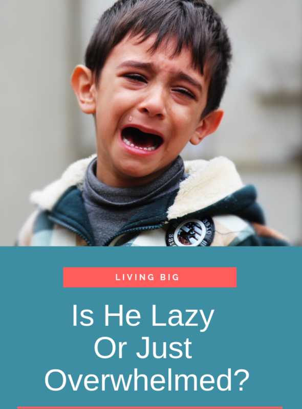 Is He Lazy Or Just Overwhelmed?
