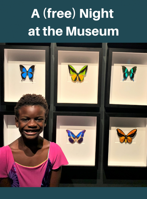 A (Free) Night at the Museum